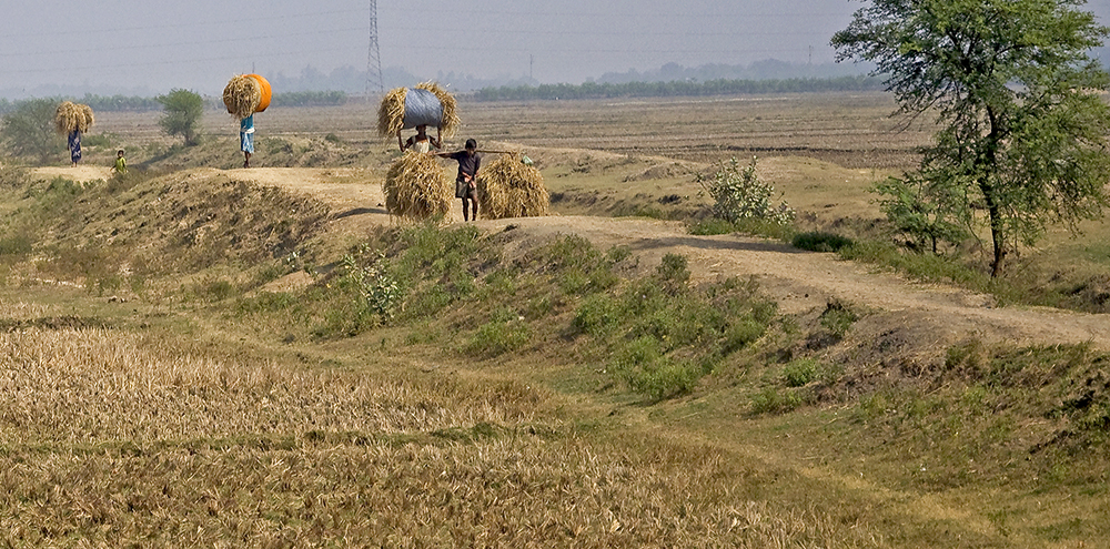 Östra Indien