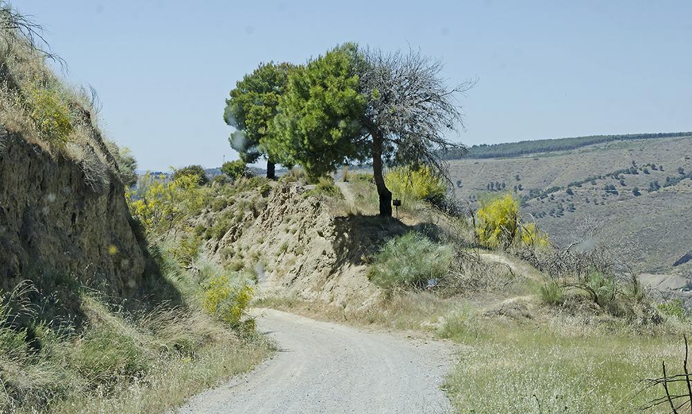 Spanien Granada Sierra Nevada