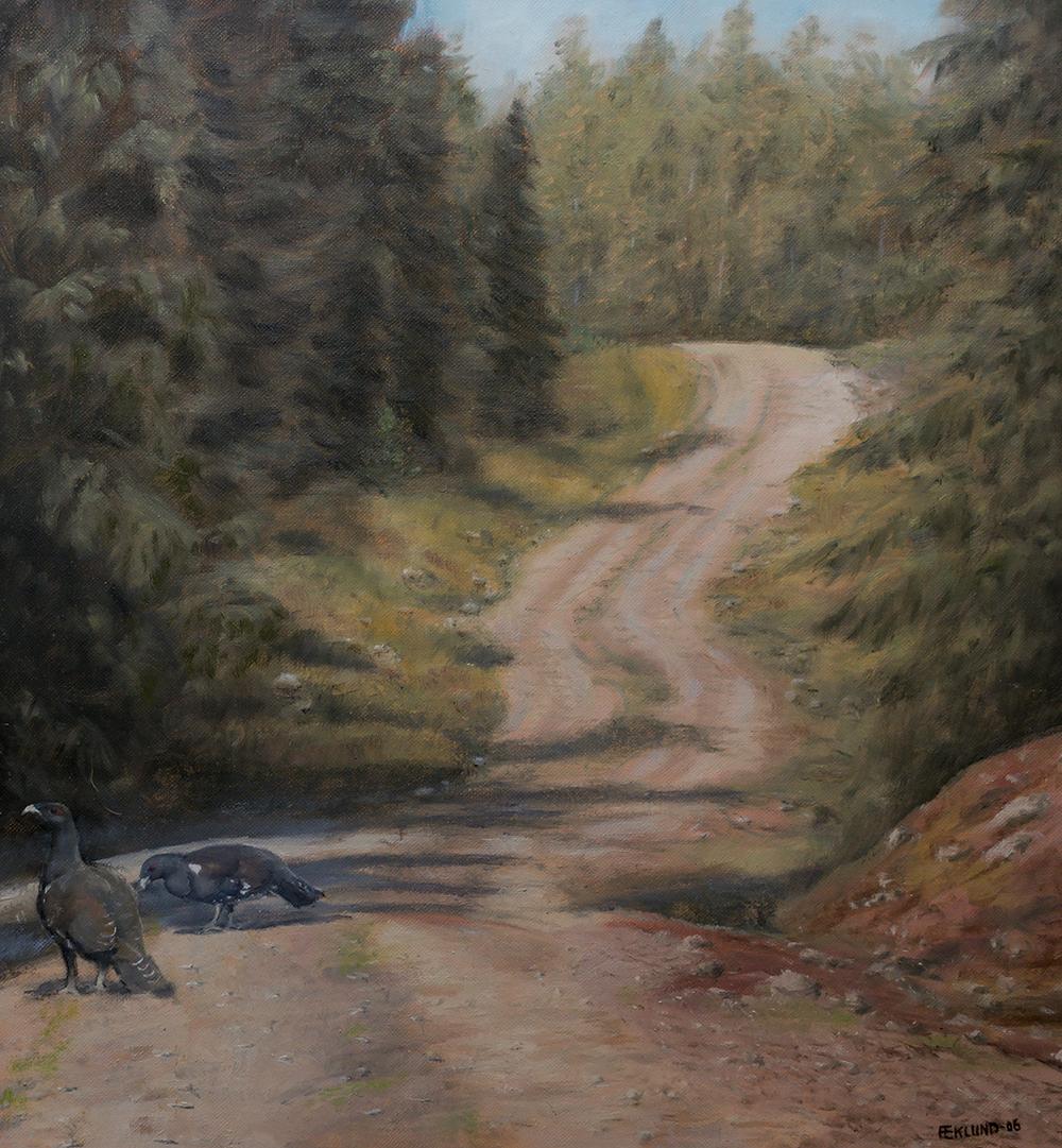 Skogsväg med tjädertuppar, 2006