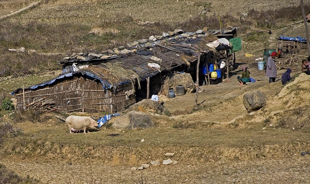 Resa Bhaktapur - Chitwan