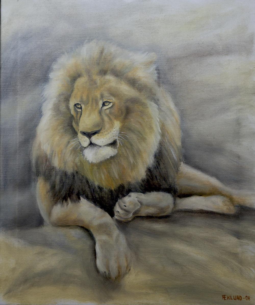 Lejonporträtt 2008