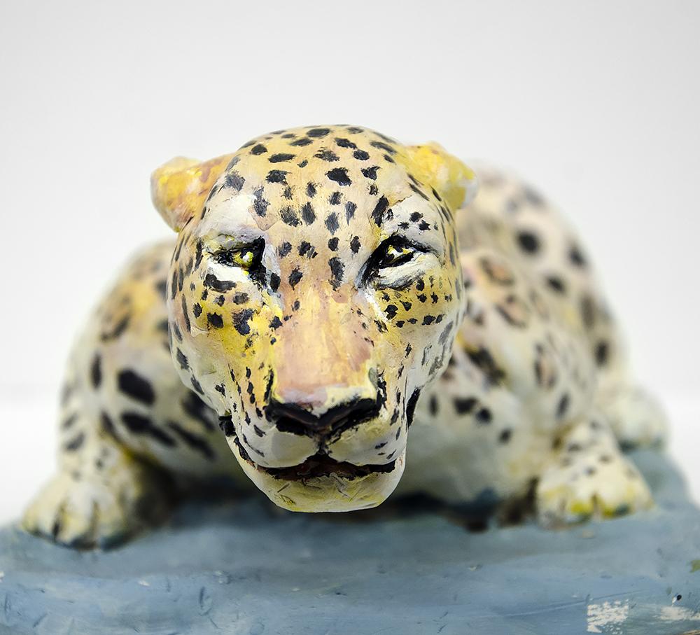 Leopard närbild