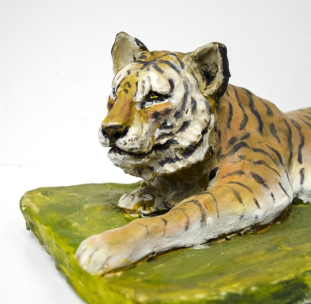 Tiger närbild