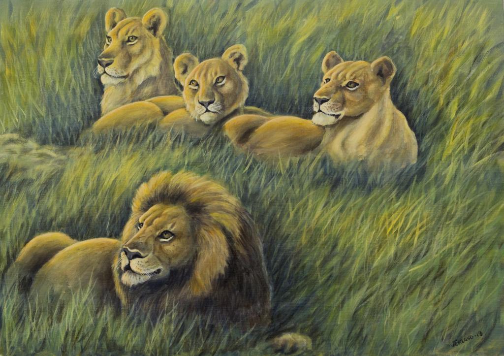 Lejonprofiler