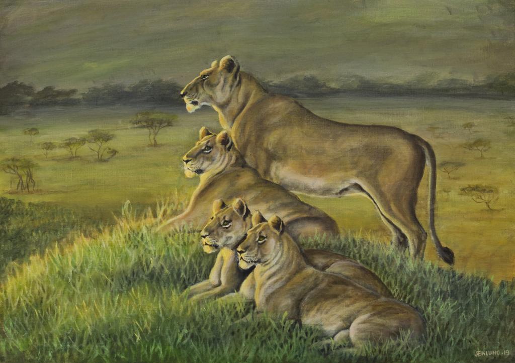 Lejonspaning