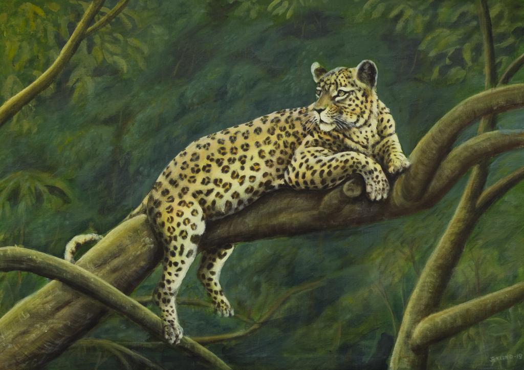 Leopardvila